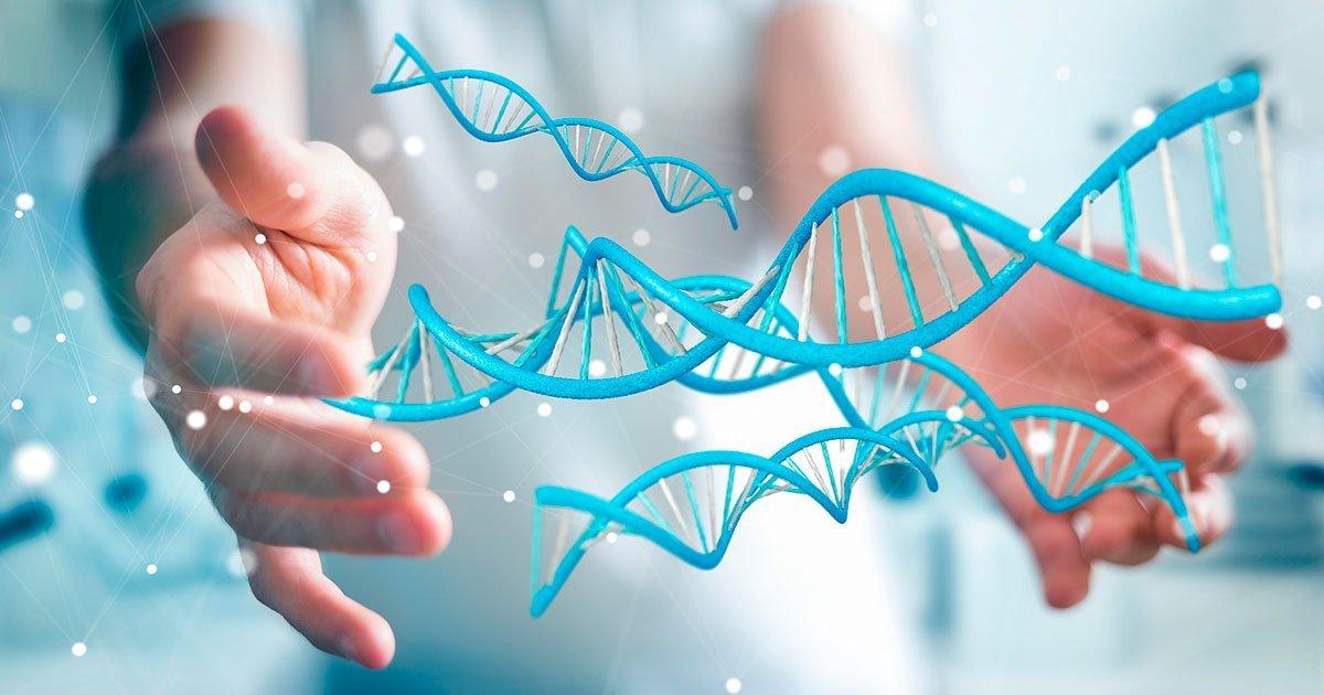 Terapia genica nell'EB - Studio EBGRAFT